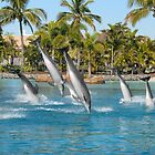 Diving Dolphins by mensoart