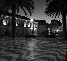 Cascais Townhall 6996 by João Castro