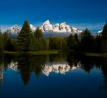 Schwabacher Landing by Wil Bloodworth