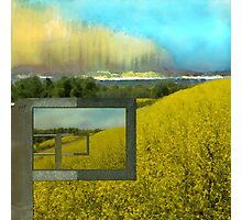Sun Drenched Fields  Photographic Print