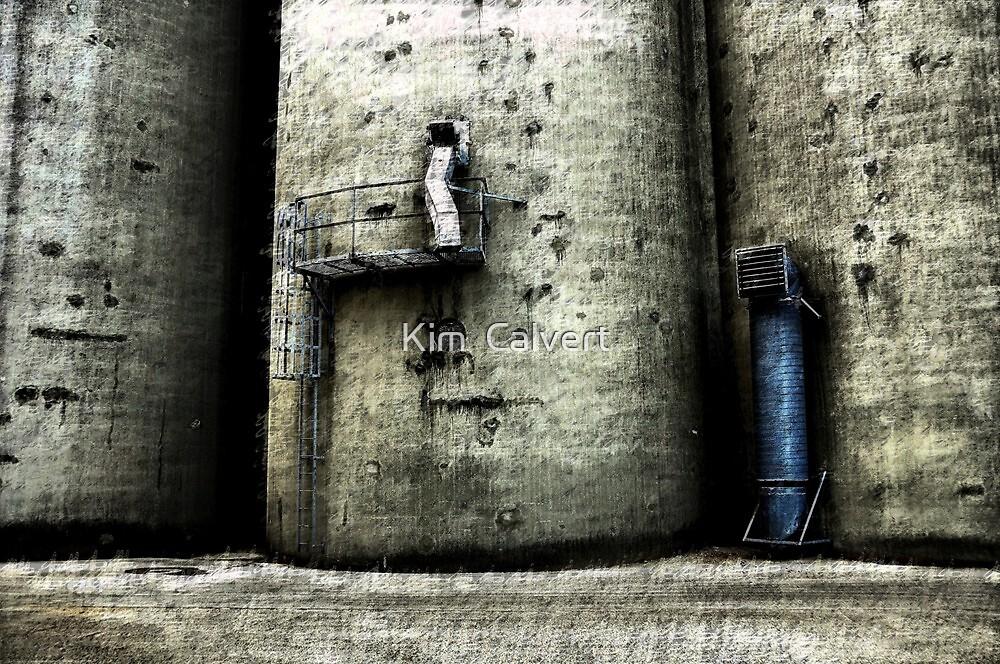 Trespassers Will Be.......PUNISHED  by Kim  Calvert