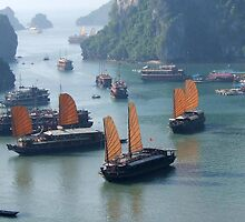 Junk Boats - Halong Bay, Vietnam by BreeDanielle
