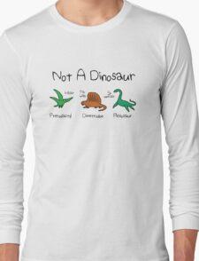 Not A Dinosaur (Pterodactyl, Dimetrodon, Plesiosaur) Long Sleeve T-Shirt