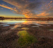 Wanted: 1 Lake by Bob Larson