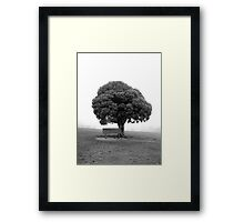 Not your ordinary cruciferous vegetable (ii) Framed Print