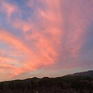Pink Clouds by marcy413