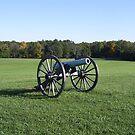 Cannon - Manassas Battlefield by April  West