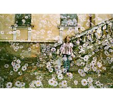 When Have All the Flowers Gone? Photographic Print