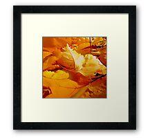 Vibrant Winter #1 Framed Print