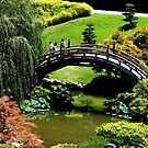 Japanies Garden with marple tree by loiteke