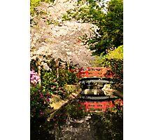 Red Bridge Reflection Photographic Print