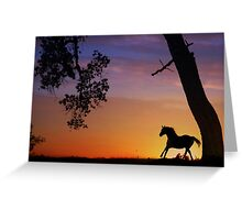 Silouetted Horse in the Sunset Greeting Card