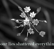 Lies Kill by Courtney Tomey