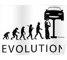 Human Evolution Poster
