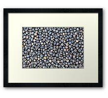 Black Pepper Corns Framed Print
