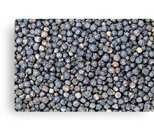 Black Pepper Corns Canvas Print