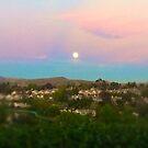 Full Moon Sky by marcy413