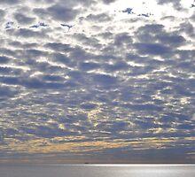 ocean sky II -Cottesloe Beach by TanyaVanderzwan