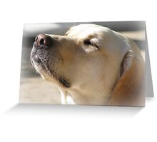 ~ Bliss ~ Greeting Card
