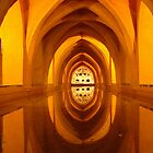 Pool of reflections, Seville, Spain, 2003 by Chris Culy