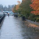 Heading home in the rain, Vancouver, Canada, 2007 by Chris Culy