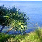 Blue Green Sea by Melissa Park