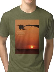 love bats admiring the sunset! Tri-blend T-Shirt