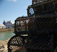 CRAB POTS & THE LITTLE BLUE HOUSE by RED-RABBIT