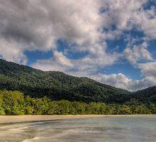 Daintree Coast Panoramic by Ryan Pedlow