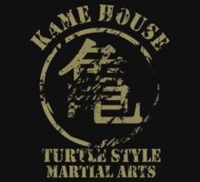 Kame House Symbol by GeekLoot