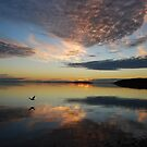 Cloud reflections by Ian Berry