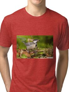 Birds  b 20 (c)(t) (on request Black and White) by Olao-Olavia / Okaio Créations  by fz 1000 26.08.2014 Tri-blend T-Shirt