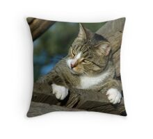 CLAW POWER Throw Pillow