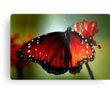 ~Just like a butterfly... Metal Print