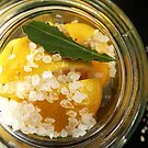 lemon + salt + bay by MsGourmet