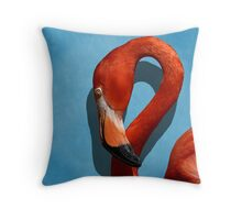 Curves, A Head Throw Pillow