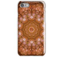 Liquid Amber at Sunset iPhone Case/Skin