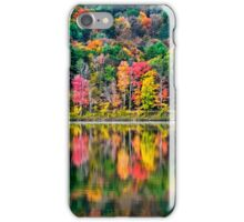 Colorful Fall Landscape Art iPhone Case/Skin