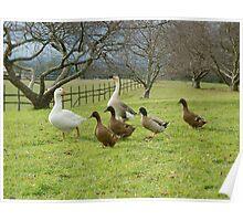 Goosey goosey gander Poster