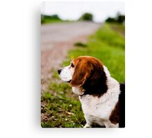 Country Pooch Canvas Print