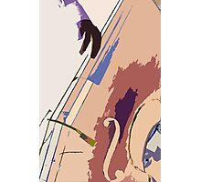 Jazz Bass Illustration Photographic Print