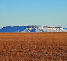 Square Butte is Beautiful by Donna Ridgway