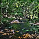 Down By The Creek by Lanis Rossi