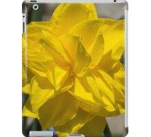 Sunny Yellow Spring - a Golden Double Daffodil iPad Case/Skin