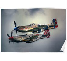 North American P-51 Mustangs Poster