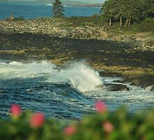 pemaquid point morning waves by Aavirett