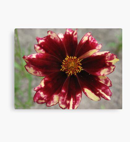 Tie-Dye Flower Canvas Print