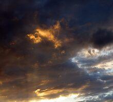 Phoenix Rising by AlbertStewart