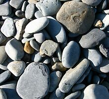 Pebbles in Sunlight by David Davies