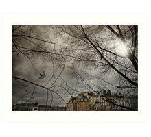Pigeon over Pont neuf Art Print